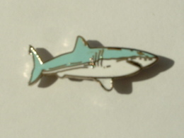 Pin's REQUIN - EMAIL - Animals