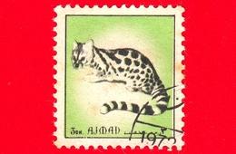AJMAN - Usato - 1972 - Animali - Felini - Genet (Genetta Sp.) - Formato Piccolo - 3 - Ajman