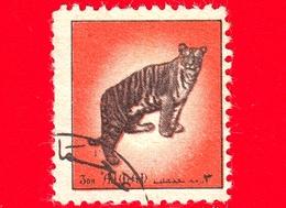 AJMAN - Usato - 1972 - Animali - Felini - Tiger (Panthera Tigris) - Formato Piccolo - 3 - Ajman