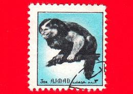 AJMAN - Usato - 1972 - Animali - Scimmie - Monkey - Formato Piccolo - 3 Celeste - Ajman