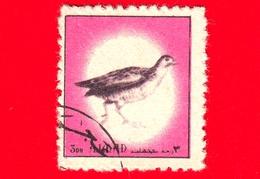 AJMAN - Usato - 1972 - Uccelli - Birds - Corncrake (Crex Crex) - Formato Piccolo - 3 - Ajman
