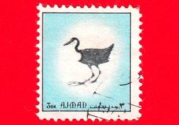 AJMAN - Usato - 1972 - Uccelli - Birds - Formato Piccolo - 3 Celeste - Ajman