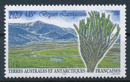 TAAF  -  2001  ,  Birnmoos - Terre Australi E Antartiche Francesi (TAAF)