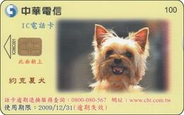 Taiwan Chip Phonecard Very Nice Dog Hund - Taiwan (Formosa)