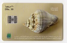 EMIRATS ARABES UNIS TELECARTE COQUILLAGE - United Arab Emirates