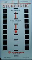 BRUGUIÈRE  :  1627  AM RHEIN  VII - Stereoscopi