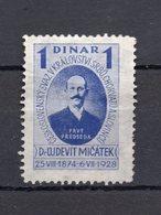 1928 YUGOSLAVIA, SLOVENIA,DR. LJUDEVIT MITACEK,ADDITIONAL STAMP,1 DINAR - Slovenia
