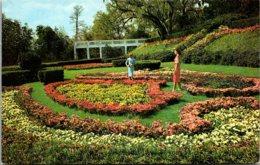 North Carolina Wilmington Orton Plantation Scroll Garden - Wilmington