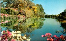 North Carolina Wilmington Orton Plantation Lagoon - Wilmington