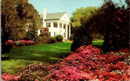 North Carolina Wilmington Orton Plantation 1956 - Wilmington