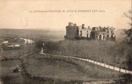 D64  BIDACHE  Les Ruines Du Château Des DUCS De GRAMONT  ..... - Bidache