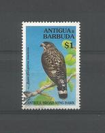 Antigua 1994 Broad-wing Hawk Y.T. 1815 (0) - Aigles & Rapaces Diurnes
