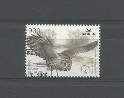 Belarus 2005 Owl Y.T. 523 (0) - Hiboux & Chouettes