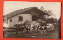 IKA-30  Troupeau De Vaches Et Cheval, Sceau La Chaux-de-Fonds 1930  Perrochet-M. - NE Neuenburg