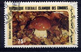 COMORES - 435° - BOLETUS EDULIS - Comores (1975-...)