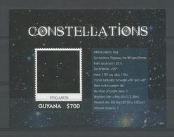 Guyana 2013 Constellations S/S 2 Y.T. BF 570 ** - Guyana (1966-...)