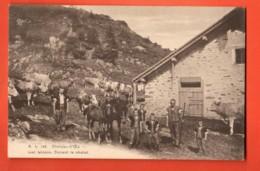 IKA-36 RARE Château-D'Oex Lac Lioson Armaillis Vaches Et Chevaux Devant Le Chalet.  No 132 Circulé 1914 - VD Vaud