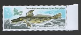 CG TAAF ** 2020 Poisson Grande Gueule à Voile - Terre Australi E Antartiche Francesi (TAAF)