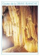 26 La Chapelle En Vercors Grotte De La Draye Blanche La Grande Coulée Stalagmitique (2 Scans) - France