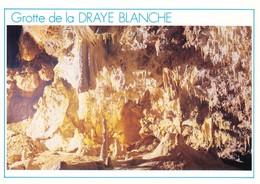 26 La Chapelle En Vercors Grotte De La Draye Blanche Draperie (2 Scans) - France