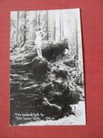 RPPC    Female Posing On Top Of Tree Stump   Ref 4105 - Postkaarten