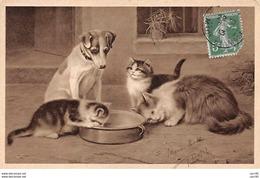 Illustrateur . N° 101492 .chat .marie Rose . - Illustrateurs & Photographes