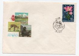 Enveloppe NOYTA CCCP URSS RUSSIE Oblitération 20/11/1974 - 1923-1991 USSR