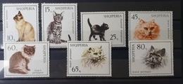 Albanien 1966, KATZEN Mi 1091-97 MNH Postfrisch - Albanien