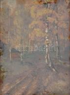 Olvashatatlan Jelzéssel: Erdei Házikó. Olaj, Karton, üvegezett Fa Keretben, 25,5×18,5 Cm - Other Collections