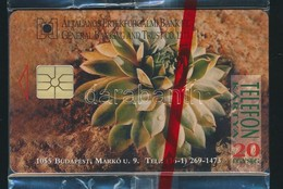 1995 ÁÉB Bank Használatlan Telefonkártya, Bontatlan Csomagolásban. Csak 4000 Pld! - Phonecards