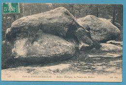 FORET DE FONTAINEBLEAU - Rochers Bouligny, La Pieuvre Des Rochers - Fontainebleau