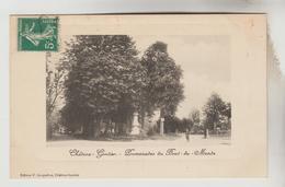 CPA CHATEAU GONTIER (Mayenne) - La Promenade Du Bout Du Monde - Chateau Gontier