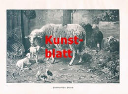 1849 O. Gebler Schafe Schafstall Hühner Kunstblatt 1898 !! - Stampe