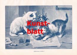 1853 C. Reichert Katze Katzen Kunstblatt 1898 !! - Stampe