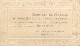 LES DOMERIES Près ISSOIRE (63 - PUY DE DÔME) FAIRE PART DE NAISSANCE FAMILLE CHAUVET JUILLET 1917 - (7 X 12 Cm). - Birth & Baptism