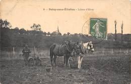 91-SOISY-SOUS-ETIOLLES- LABOUR D'HIVER - Sonstige Gemeinden