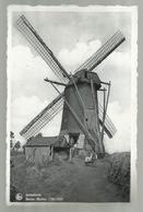 ***  ARENDONK ***   -   Beren Molen 1790 - 1929 - Arendonk