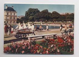 LOUEUR DE BATEAUX VOILIERS - JOUETS - Bateau Bois - Petit Métier - Jardin Du Luxembourg - Paris - Animée - Jeux Et Jouets