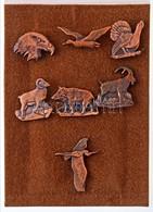 7db-os Vadállatokat ábrázoló Fém Kitűző Tétel Tokban T:1 - Coins & Banknotes