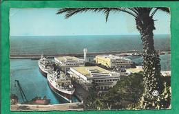 Oran Les Gares Maritimes 2scans Palmier Paquebots Phare - Oran