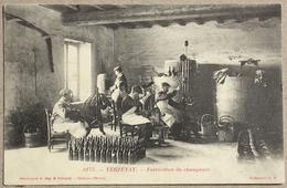 CP VERZENAY Marne Fabrication Du Champagne - Vignes