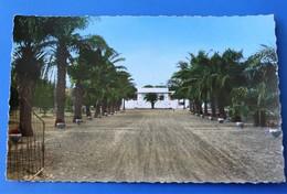 Bobo-Dioulasso Haute Volta Ex Colonie Française Burkina Faso-CPSM Carte Postale Entrée De La Résidence Cliché Exclusivi - Burkina Faso