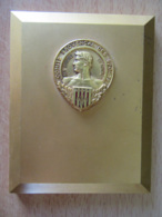 Importante Plaque En Bronze Doré Avec Médaille Du Comité Provençal Des Sports - Poids : 621g - FIA LYON - Professionals / Firms