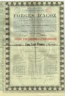 S.A. Forges D'Acoz. Action Au Porteur De 500 Francs, Complète De Ses Coupons. - Industrie
