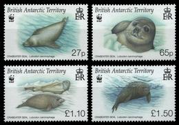 BAT / Brit. Antarktis 2009 - Mi-Nr. 505-508 ** - MNH - Robben / Seals - British Antarctic Territory  (BAT)