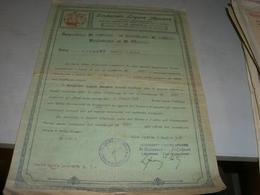 CERTIFICATO SINDACATO LIGURE APUANO 1926 - Banque & Assurance
