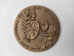 Médaille Unique - Concours National Du Meilleur Scénario Les Contrechamps De La Psychiatrie 1995 - ARDIX Medical - Professionals / Firms