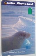 $5 Dolphin - Australia