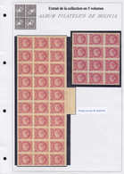 X/O BOLIVIE - Lots & Collections - Collection Spécialisée + 2850 Timbres 1870/1980, En 5 Volumes, Tous Avec Variétés, So - Bolivie