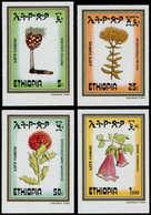 ** ETHIOPIE - Poste - 1094/97, Non Dentelés (tirage 150): Flore - Ethiopia